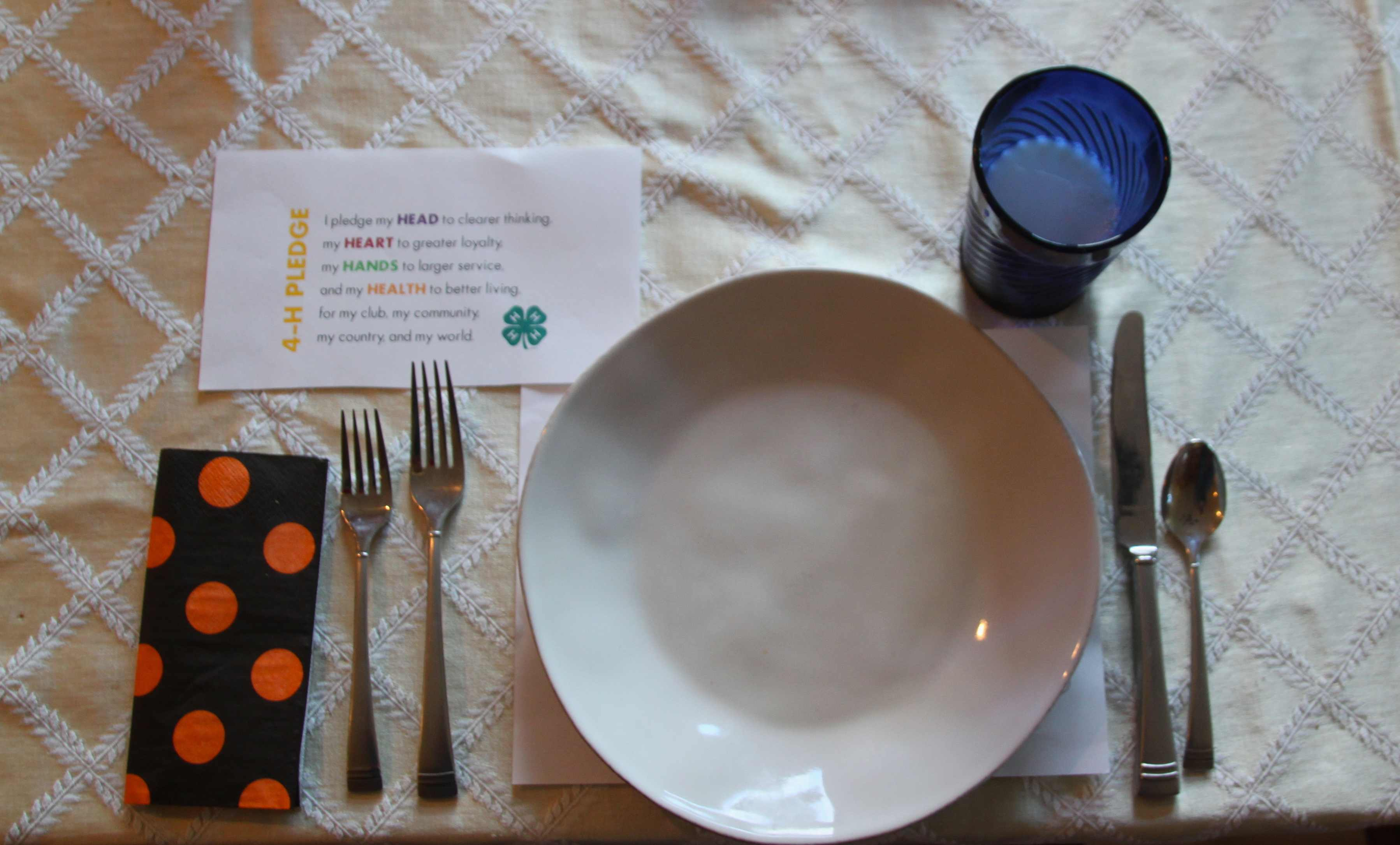 Table-Setting_missE & 4-H Cloverbud Lesson: Teaching Kids to Set A Table - The Pinke Post
