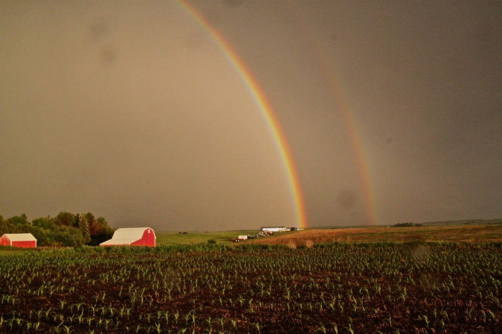 The Pinke Post Double Rainbow