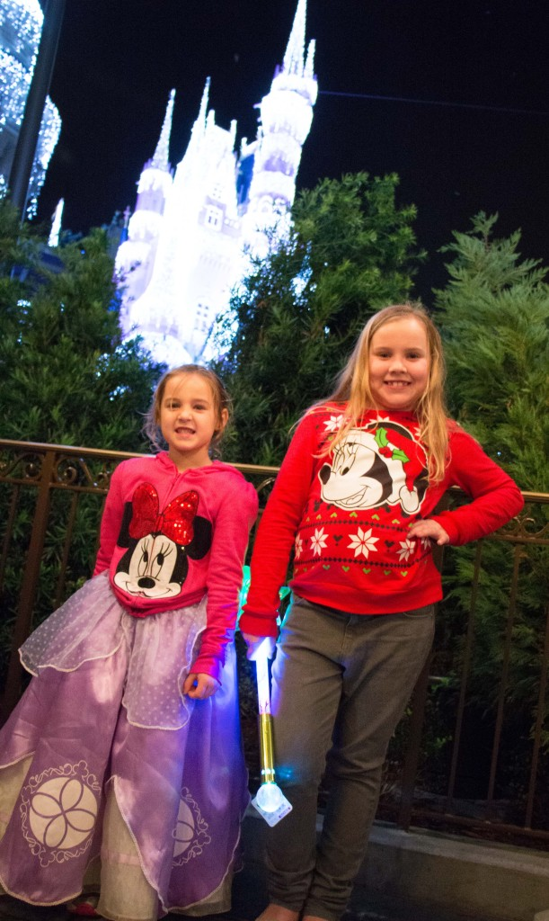 December Disney World